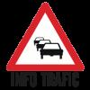 info-trafic-1-360x251